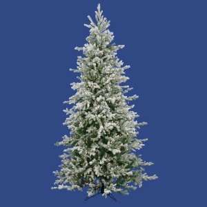 Lit Frosted Dunhill Fir Christmas Tree   Clear Lights