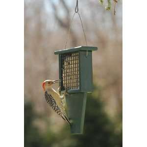 Suet Bird Feeder with Tail Prop   Hunter Green Recycled