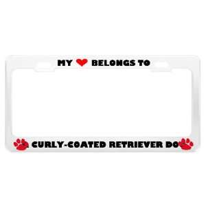 A Curly Coated Retriever Dog Pet White Metal License Plate
