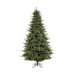 Catalina Frasier Fir Dura Lit (6 1/2) Artificial