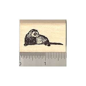 Small Reclining Ferret Rubber Stamp Arts, Crafts & Sewing