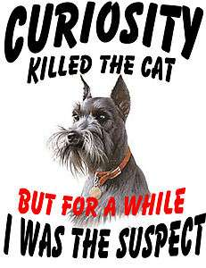 MINIATURE & GIANT SCHNAUZER DOG CURIOSITY KILLED CAT T SHIRT  S M L