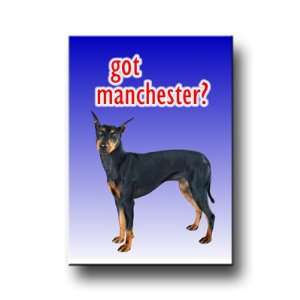 Manchester Terrier Got? Fridge Magnet