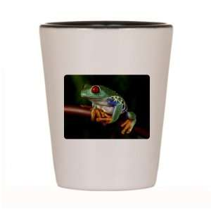 Shot Glass White and Black of Red Eyed Tree Frog