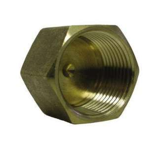 Watts 1/4 In. Brass Pipe Cap A 736